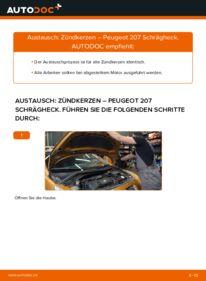 Wie der Wechsel durchführt wird: Zündkerzen 1.4 HDi Peugeot 207 WA tauschen