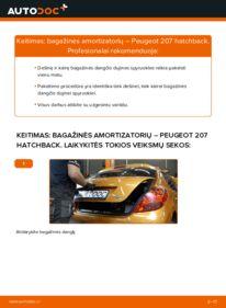 Kaip atlikti keitimą: 1.4 HDi PEUGEOT 207 (WA_, WC_) Bagazines Amortizatorius