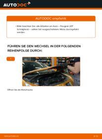 Wie der Wechsel durchführt wird: Keilrippenriemen 1.4 HDi Peugeot 207 WA tauschen