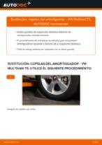 Recomendaciones de mecánicos de automóviles para reemplazar Bieletas de Suspensión en un VW VW Transporter T5 2.5 TDI 4motion