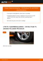 Byta fjäderbenslagring fram på VW Multivan T5 – utbytesguide