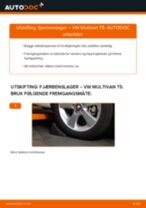 Hvordan bytte og justere Startbatteri VW MULTIVAN: pdf håndbøker