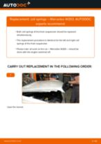 Changing Springs MERCEDES-BENZ C-CLASS: workshop manual