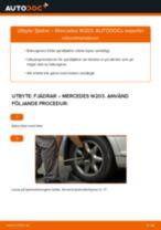 Byta fjädrar bak på Mercedes W203 – utbytesguide