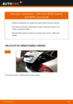 Recomandările mecanicului auto cu privire la înlocuirea MERCEDES-BENZ Mercedes W202 C 250 2.5 Turbo Diesel (202.128) Amortizor