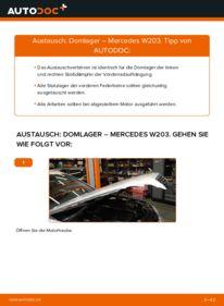 Wie der Wechsel durchführt wird: Domlager C 220 CDI 2.2 (203.006) Mercedes W203 tauschen
