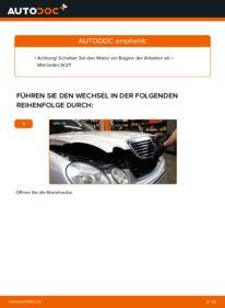 Wie der Wechsel durchführt wird: Keilrippenriemen E 220 CDI 2.2 (211.006) Mercedes W211 tauschen