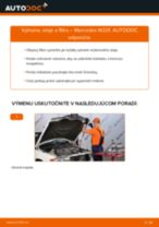 Montáž Olejový filter MERCEDES-BENZ 190 (W201) - krok za krokom príručky