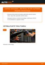 LANCIA PHEDRA Gofruotoji Membrana Vairavimas pakeisti: žinynai pdf