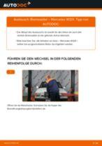 Reparatur- und Wartungsanleitung für Mercedes W108