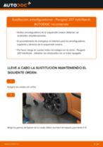Reemplazar Amortiguador PEUGEOT 207: pdf gratis
