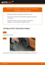 Pakeisti Rankinio Stabdžio Trosas PEUGEOT 207: instrukcija