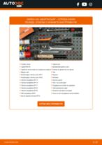 STARK SKSA-0132893 за XSARA PICASSO (N68) | PDF ръководство за смяна