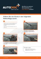 OPEL-Reparaturanleitung mit bildlichen Darstellungen