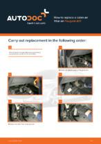 PEUGEOT - repair manual with illustrations