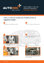 VW - manuale de reparación con ilustraciones