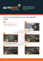 PEUGEOT - εγχειρίδια με εικονογραφήσεις