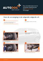 RENAULT - reparatie handleidingen met illustraties