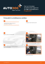 Cum se înlocuiesc amortizoarele suspensiei din față a autovehiculului Peugeot 407