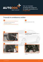 Cum se înlocuiesc amortizoarele suspensiei din spate a autovehiculului Peugeot 407