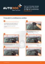 Cum se înlocuiesc lamele ștergătoarelor de parbriz din față ale automobilului Ford Fiesta V