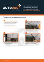 Cum se înlocuiesc lamele ștergătoarelor de parbriz din față ale automobilului Mercedes-Benz Viano W639