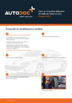 Cum se înlocuiesc plăcuțele din față ale frânei cu disc Peugeot 407