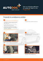Cum se înlocuiesc plăcuțele din spate ale frânei cu disc Peugeot 407