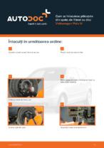 Cum se înlocuiesc plăcuțele din spate ale frânei cu disc Volkswagen Polo IV