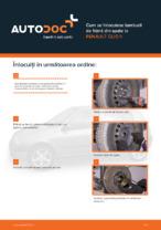 Cum se înlocuiesc tamburii de frână din spate la RENAULT CLIO II