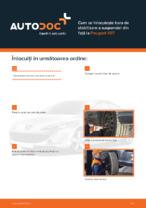 Cum se înlocuiește bara de stabilizare a suspensiei din față la Peugeot 407