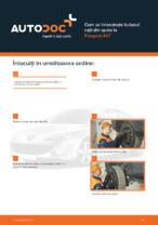 Cum se înlocuiește butucul roții din spate la Peugeot 407