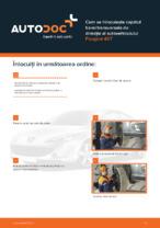 Cum se înlocuiește capătul barei transversale de direcție al autovehiculului Peugeot 407