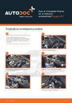 Cum se înlocuiește filtrul de aer al motorului automobilului Peugeot 407