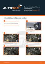 Cum se înlocuiește filtrul de combustibil al automobilului Peugeot 407