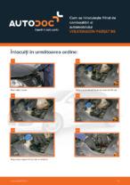 Cum se înlocuiește filtrul de combustibil al automobilului VOLKSWAGEN PASSAT B6