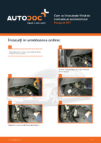 Cum se înlocuiește filtrul de habitaclu al automobilului Peugeot 407