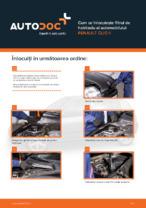 Cum se înlocuiește filtrul de habitaclu al automobilului RENAULT CLIO II