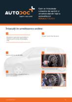 Cum se înlocuiește rulmentul de sarcină al amortizorului din față la autovehiculul RENAULT CLIO II
