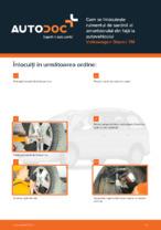 Cum se înlocuiește rulmentul de sarcină al amortizorului din față la autovehiculul Volkswagen Sharan 7M