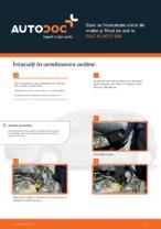Cum se înlocuiește uleiul de motor și filtrul de ulei la FIAT PUNTO 188