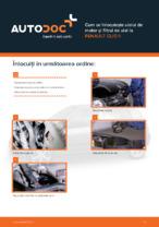 Cum se înlocuiește uleiul de motor și filtrul de ulei la RENAULT CLIO II