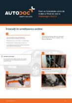 Cum se înlocuiește uleiul de motor și filtrul de ulei la Volkswagen Golf IV