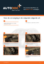 Auto-onderhoud: tutorial met illustraties