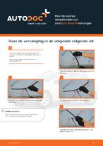 OPEL - reparatie tutorial met illustraties