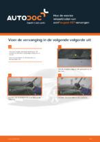 PEUGEOT - reparatie tutorial met illustraties