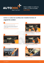 AUDI - manuale de reparación con ilustraciones