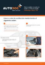 Manual de taller para VW SHARAN en línea