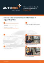 Manual de taller para PEUGEOT 407 en línea