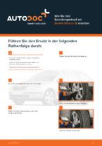 SKODA-Werkstatthandbuch mit Abbildungen